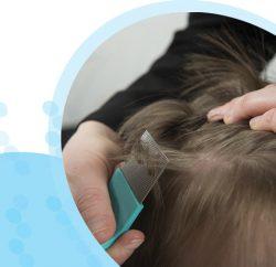 סירוק שיער של ילד במסרק כינים