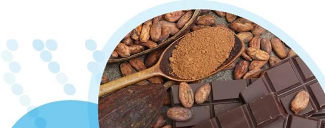 שוקולד פנימי