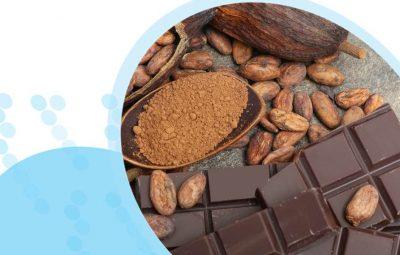 שוקולד ראשי