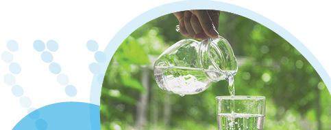 מזיגת מים לכוס מקנקן על רקע צמחייה ירוקה